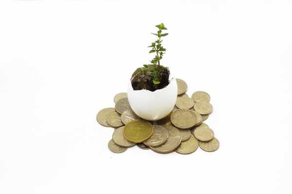 Kredyty bez bik Jutrosin zawnioskuj i wyślij sms o treści: WNIOSEK na 7393 (3.69 zł za sms)